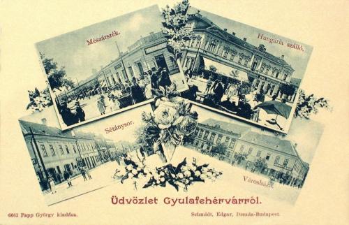 Gyulafehérvár:Városháza,Hungária szálloda,mészárszék.1901