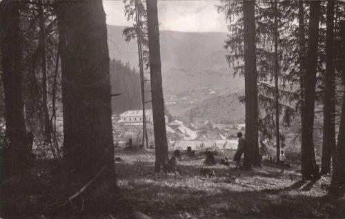 Borszék:látkép alsó Borszék fele,középen a régi iskola.1941