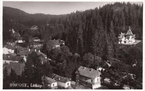 Borszék:alul középen a Máthé villa,jobbra fent a Nimerianu.1941