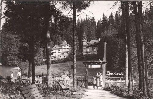 Borszék:Marica és Smilovits (Kelemen) villák.1943