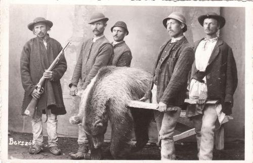 Borszéki erdőben(Kupás havasok)) lelőtt medve haza szállitása, bocskorban. 1903