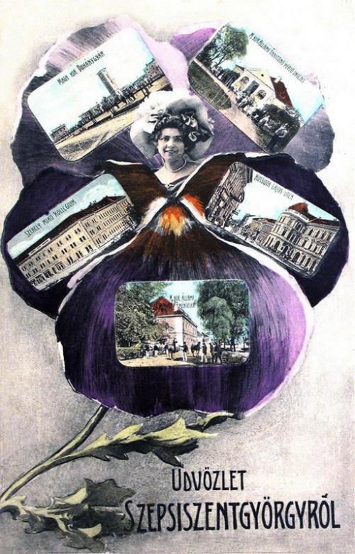 Sepsiszentgyörgy:virágos mozaik lap.1901