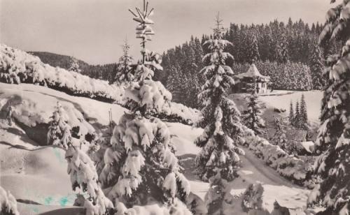 Borszék:téli kép a Nimerianu villával.1942