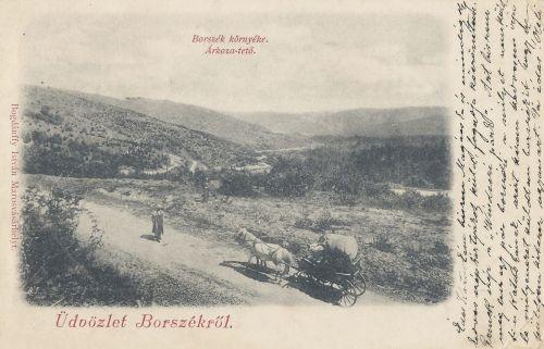 Borszék környéke:Árkoza tető (Kránga-tető),borszéki hágó.1899