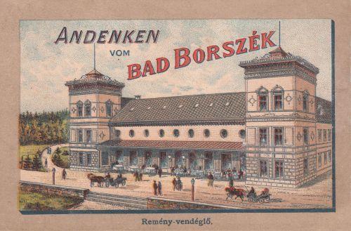 Borszékfürdő:Remény szálloda és étterem.Morelli metszet.1890