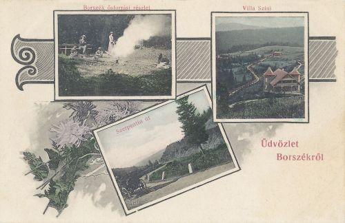 Borszék:Szini villa,Ősforrás részlet és szerpentin út.1906