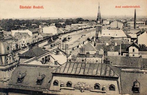 Arad:látkép a városháza tornyából az evangélikus templommal.1909