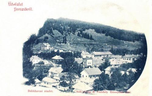 Borszék:1896 ezredév,milleniumi domboldal.1901