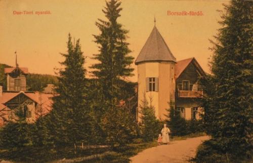 Borszék:balra a Csiki villa,jobbra a Due-Torri nyaraló.1908