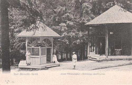 Borszék:Jószef főherceg kúr,régi nevén erdei forrás.1905