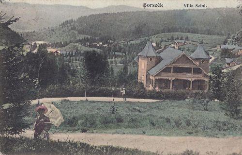 Borszék:Dr.Szini villa a Csaba királyfi útról nézve.1910