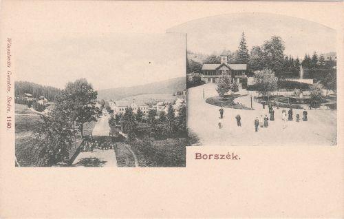Borszék:Szent István út a Mélik szállodával és a Főkút.1900