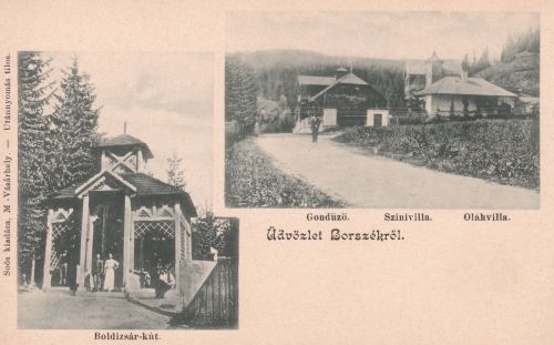 Borszék:Boldizsár kút,Gondűző-,Szini-,Oláh villák.1901