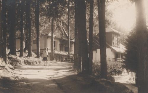 Borszék:Szász és Csibi villák,1930 körül.