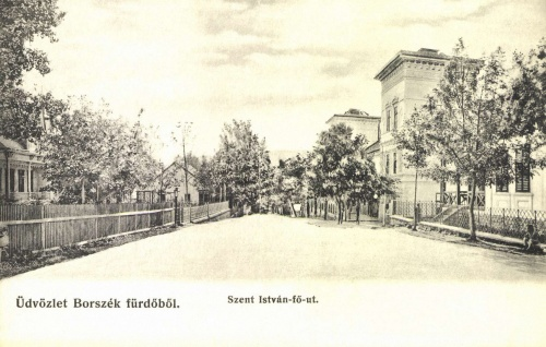 Szent István fő út,balra a Török villa,jobbra a Remény szálloda,1906.