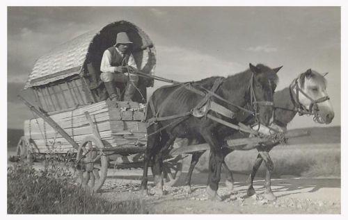 Csikmadaras:borvizet és deszkát szállitó székely szekeres.1942