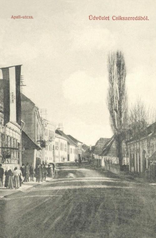 Apafi Mihály utca:balra Györgypál Domokos főispán,országgyűlési képviselő,ügyvéd választási magyar zászlója:ÉLJEN,1906.
