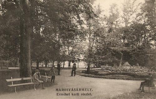 Marosvásárhely:Erzsébet ligeti részlet a parkkal.1911