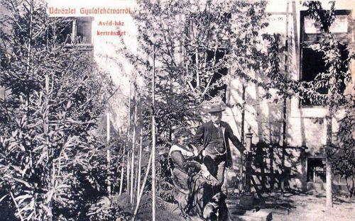 Gyulafehérvár:Avéd ház ,kertrészlet.1908