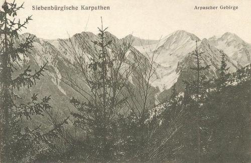 Kárpátok:Árpád hegység.1914