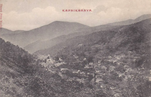 Kapnikbánya:látkép.1911