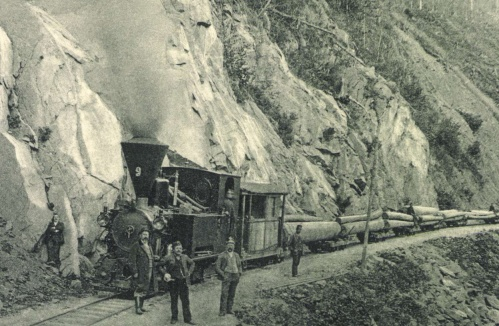 Kommandó és Kovászna között fát szállitó gőzmozdony,1904-ben.