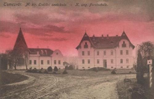 Temesvár:erdőöri szakiskola.1913