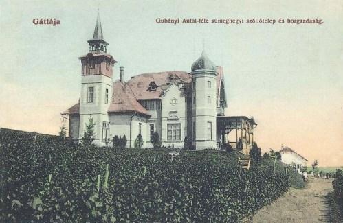 Gáttaja:sümeghegyi szöllőtelep és borgazdaság.1910