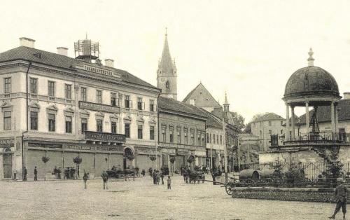 Takarékpénztár,református vártemplom,Bodor Péter zenélő kút,1905-ben.