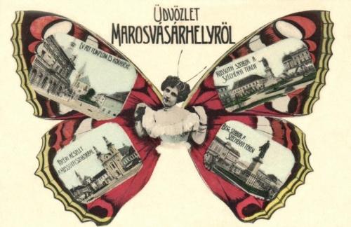 Marosvásárhelyi pillangó (lepke képeslap),1906.
