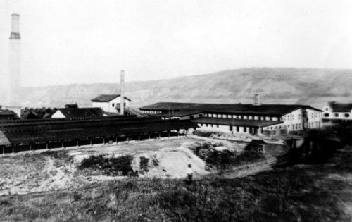 Marosvásárhely:meggyesfalvi szeszgyár,1910 körül.