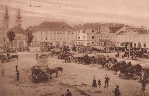 Temesvár:Losonczi téri piac.1908