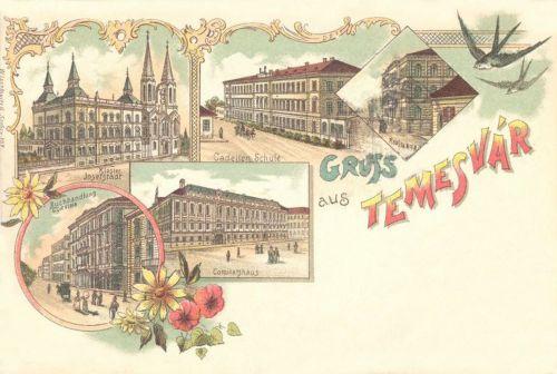 Temesvár:Megyeháza,Corvin könyvesbolt,zárda,litográfia 1899