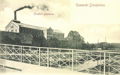Temesvár:Erzsébet gőz malom,1900.