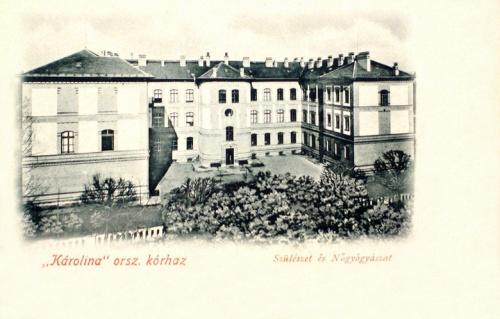 Kolozsvár:Karolina korház,szülészet és nőgyogyászat.1901