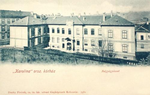 Kolozsvár:Karolina korház,belgyógyászat.1902