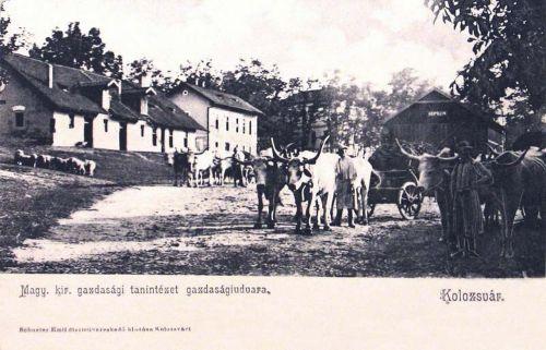 Kolozsvár:Gazdasági tanintézet udvara.1904