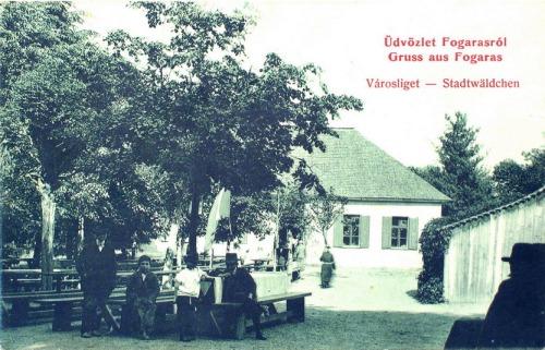 Fogaras:városliget.1912
