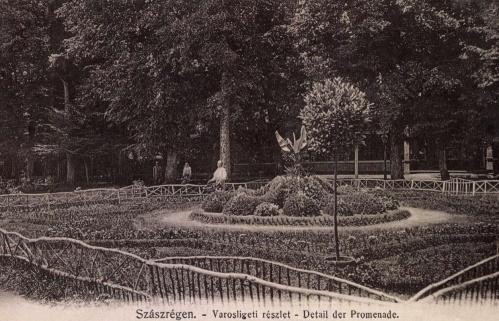 Szászrégen:városligeti részlet,1904.