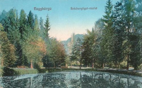 Nagybánya:Széchenyi liget.1915