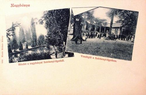 Nagybánya:Széchenyi liget.1904
