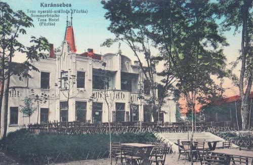 Karánsebes:Tens nyaraló-szálloda (fűzfás).1915