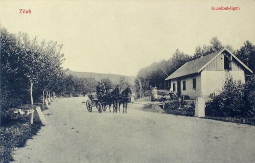 Zilah:Erzsébet liget.1908