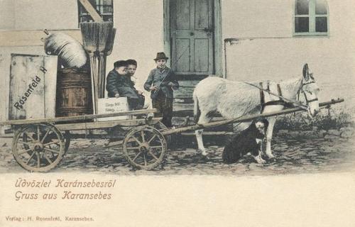 Karánsebes-Karansebesch-Caransebes:Rosenfeld kereskedő szekere.1902