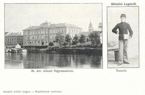 Lugos:Magyar Királyi Állami Főgimnázium,tanuló.1900