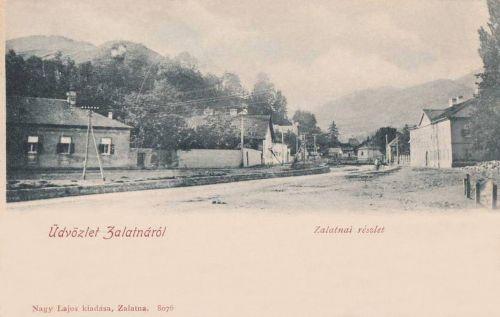 Zalatna:részlet.1902
