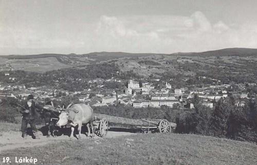 Zilah:látkép fa szállitó bivaj szekérrel.1941