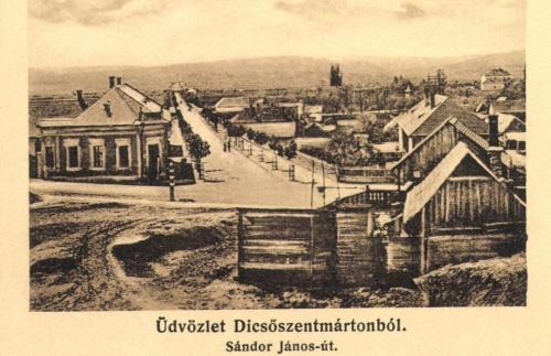 Dicsőszentmárton:Sándo János utca,1910.