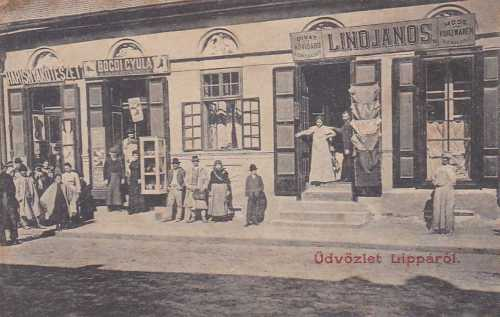 Lippa:harisnya kötészet-,divat és rövidárú üzlet,1909.