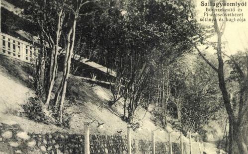 Bor értékesítő és Pince Szövetkezet sétánya a kuglizóval,1914.